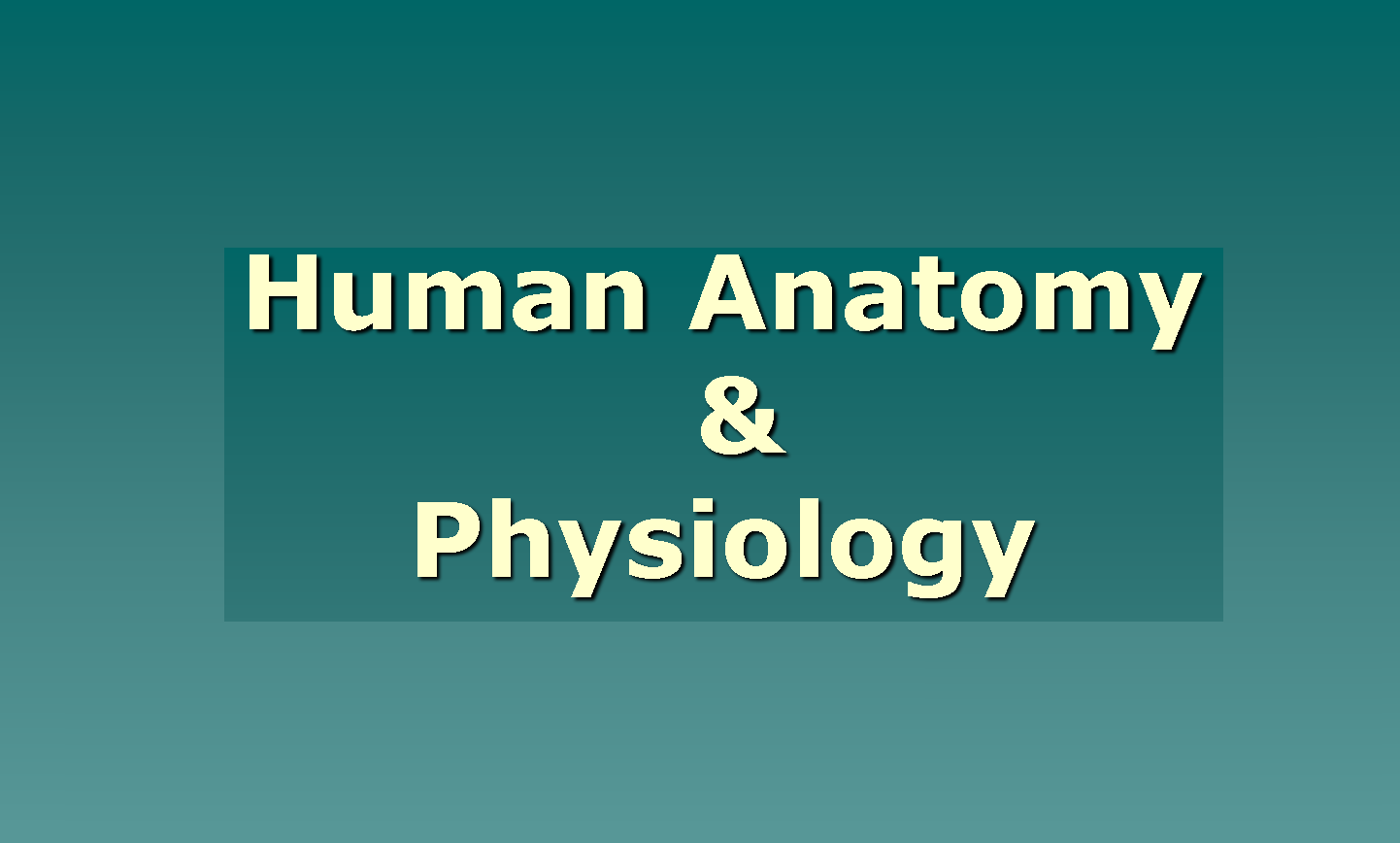 Anatomy And Physiology Course | Best Way to Study For Anatomy and ...