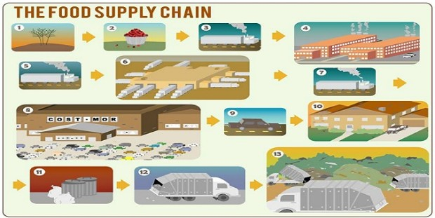 food retail supply chain Related articles food  what's eating the health food supply chain healthful food  can boost the retail supply chain's ability to deliver what the.