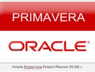 Starting up Primavera 6 Release 8.1 Main Environment