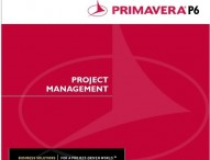 Primavera Project Planner P6 | Types | Relationships
